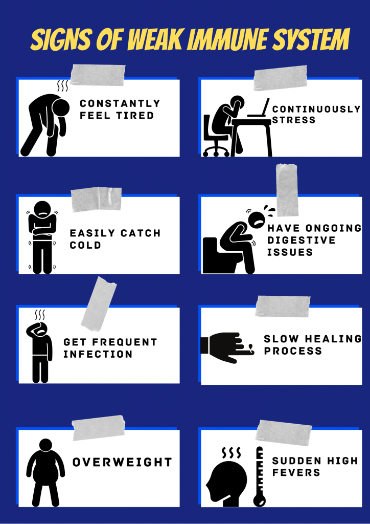 a summary of 8 signs of weak immune systems which you should notice