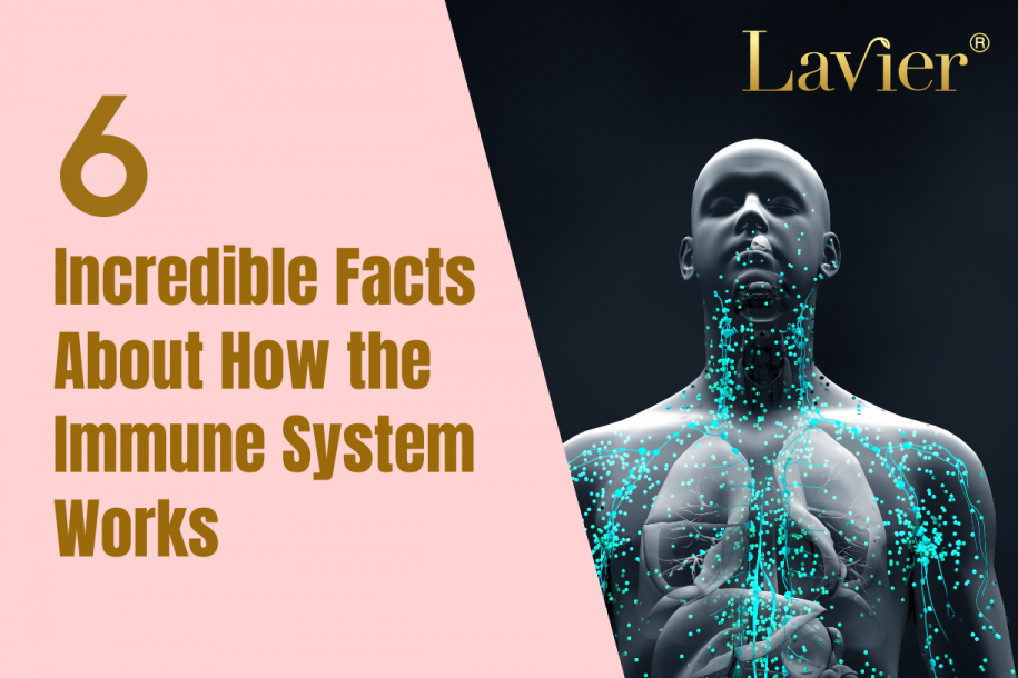 6 Incredible Facts About How the Immune System Works